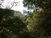 (3/18)林道から覗き見るフナンギョの滝