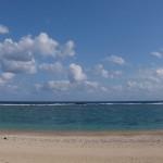 徳浜のリーフ
