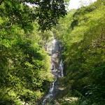 住用町神屋タンギョ(滝)