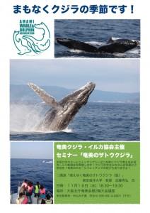 セミナー「奄美のザトウクジラ」