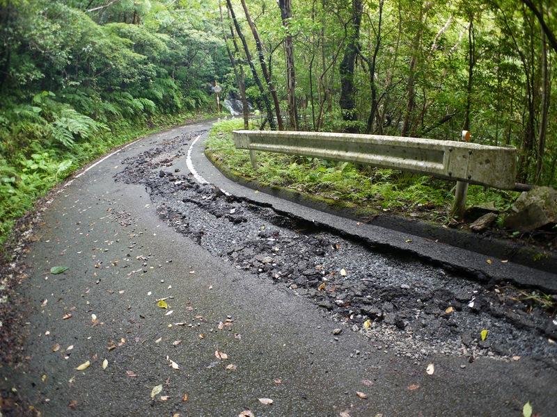 金作原原生林への林道は大丈夫でした