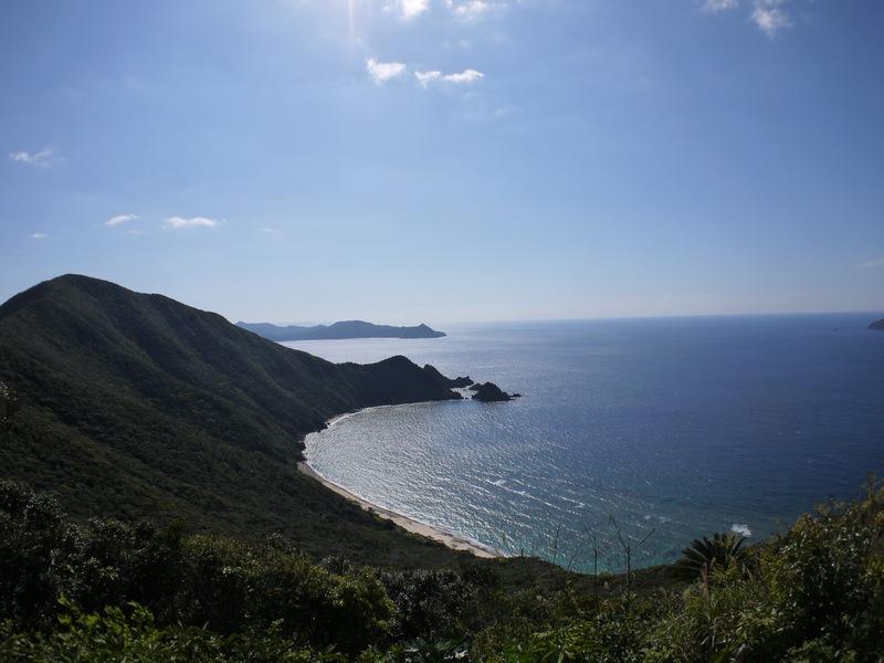 加計呂麻島でも通行にご注意を