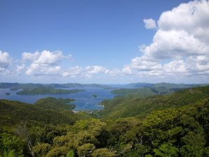 新緑の大島海峡