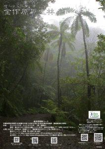 金作原探検コースポスター  ヒカゲヘゴバージョン