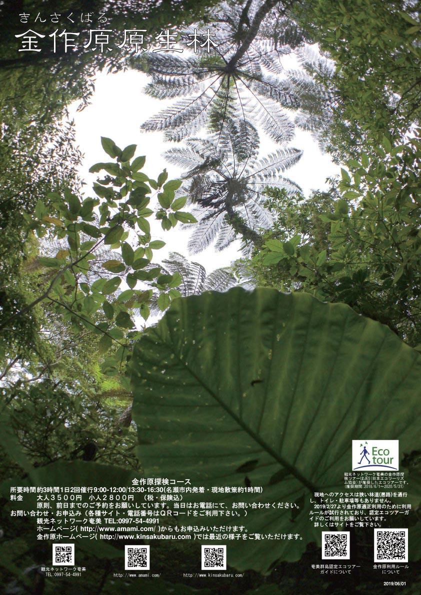 金作原探検コースの新ポスター