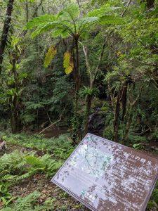 階段と説明板