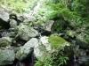 (6/2)フナンギョの滝